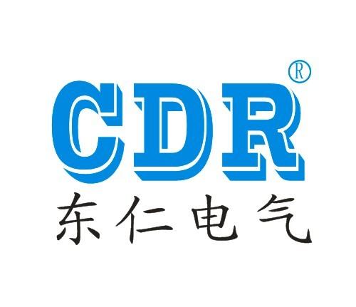 乐清市东仁电气科技有限公司