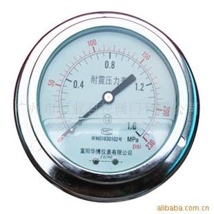 :品牌上海荣华仪表厂型号YN-60、100ZT 类型径向带后边精度等级1.6图片