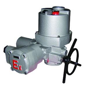 扬州调节防爆型电动装DQW500-1TB