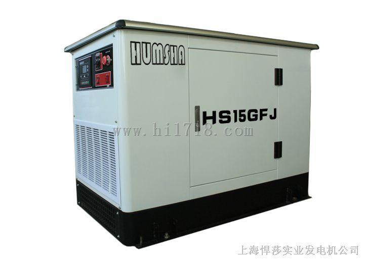 15kw水冷汽油发电机 美国进口