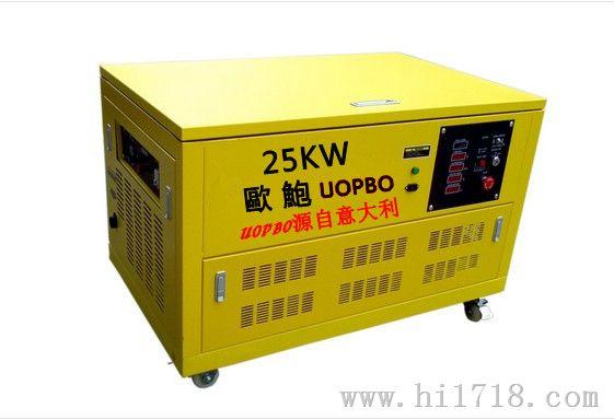 上海 汽油发电机/发电机 25KW汽油发电机