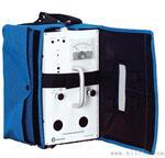 美国Interscan GF1900型硫酰氟检测仪