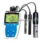 高性价比便携式 pH/RDO 测量仪