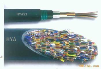 HPVV电话电缆价格,优质HPVV电话电缆,HPVV电话电缆厂商