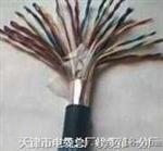 充油通信电缆HYAT-1000×2×0.5