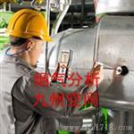 烟气分析仪/烟气测试仪
